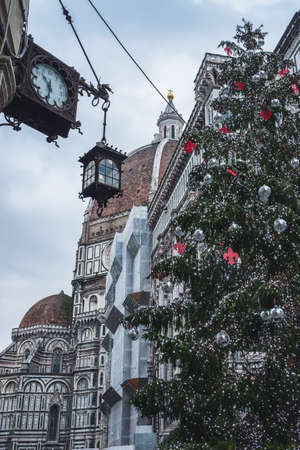 Christmas tree in Florence, Christmas in Florence, Christmas tree, Florence main tree, Tuscany, Florence, Italy