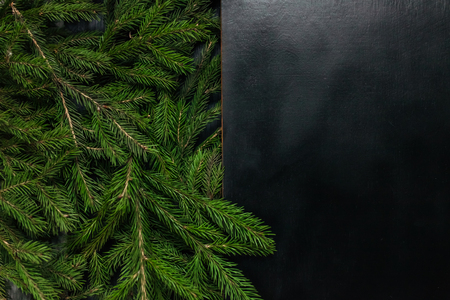 Christmas background. Black background. Real tree. Beautiful photo Stock Photo
