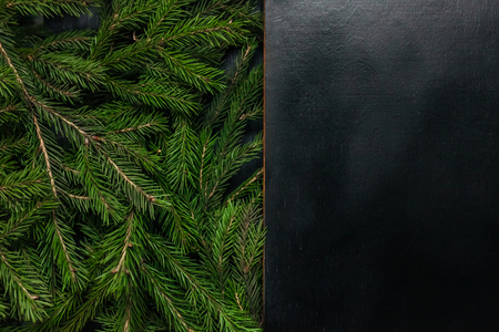 Fresh fir branch, isolated on a black background. View from the top. Christmas design wooden background. Beautiful fir
