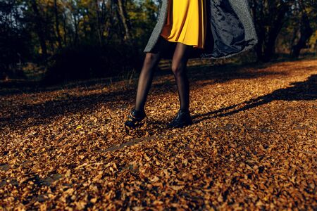 A girl walks in the autumn Park, throwing leaves with her feet