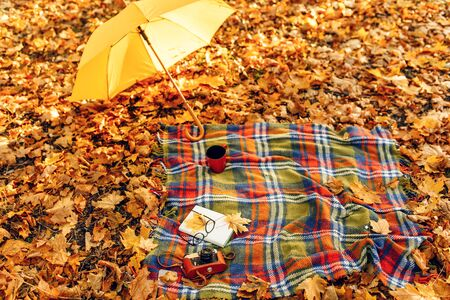 Checkered red and yellow plaid with fringe and autumn leaves, a book, glasses, and a camera, and legs, and an umbrella on the background of autumn nature . Autumn outdoor recreation concept