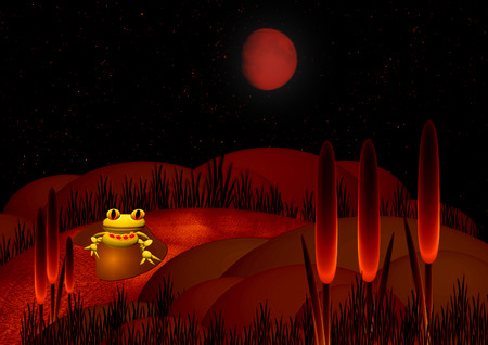 pond water: green frog at night on a bog