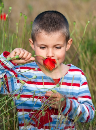 boy and flower photo