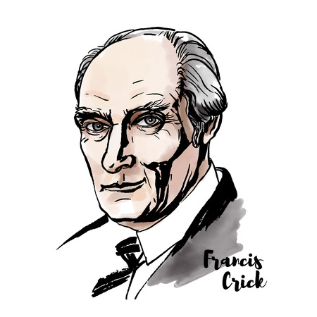 Francis Crick watercolor vector portrait with ink contours.  British molecular biologist, biophysicist, and neuroscientist.