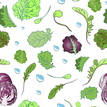 Vector seamless lettuce pattern with radicchio and water drops. Vector illustration for backgrounds.