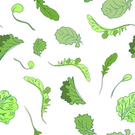 Vector seamless lettuce pattern. Vector illustration for backgrounds. Illustration