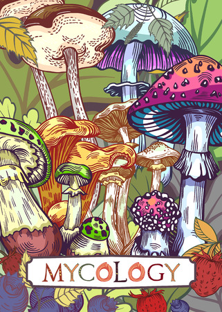 Mycology cover illustration with leaves and berries in engraved style. Fully editable vector illustration with clipping mask. Figured table with mushroom lettering.