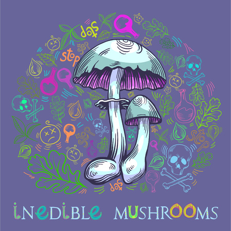 Yellow staining mushroom in engraved style. Fully editable vector mushroom illustration with warning icons, nature elements and lettering.