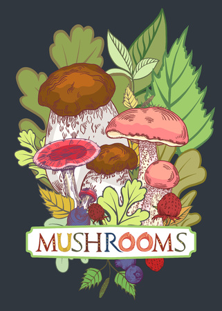 Edible mushroom cover with leaves and berries in engraved style. Fully editable vector illustration with clipping mask. Figured table with mushrooms lettering.