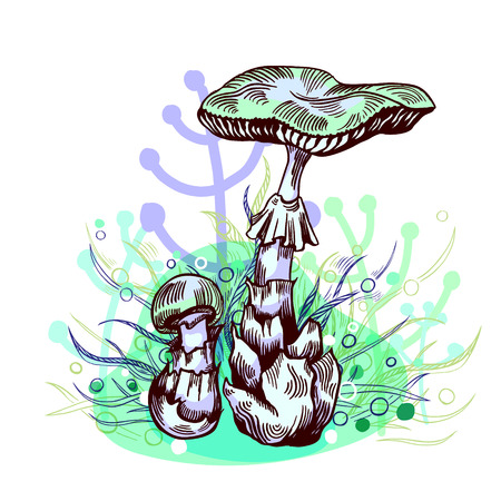 Deadly amanita mushroom with grass on background in engraved style. Vector illustration. Illustration