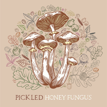 Pickled honey fungus mushroom with leaves, spices and berries in engraved style. Round shape pattern background in pale colors. Vector illustration for pickled mushrooms with lettering.
