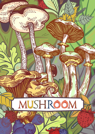 Edible mushroom cover illustration with leaves and berries in engraved style. Fully editable vector illustration with clipping mask. Figured table with mushroom lettering.