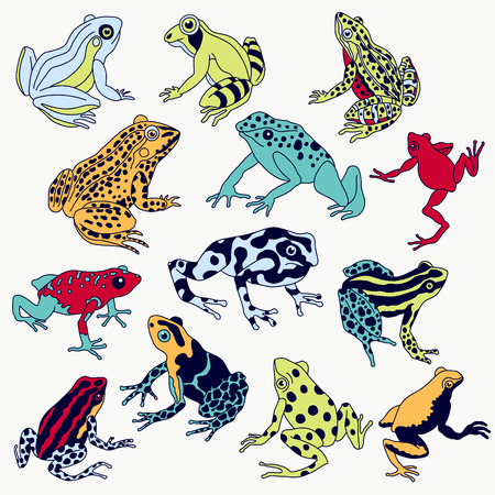 Vector frogs set hand drawn illustration. Violet contour, various colors, fully editable image. Illustration