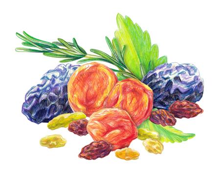 Assortiment de fruits secs avec des feuilles de menthe et du romarin dessiné avec un crayon de couleur dans un style réaliste. Isolé sur fond blanc. Banque d'images