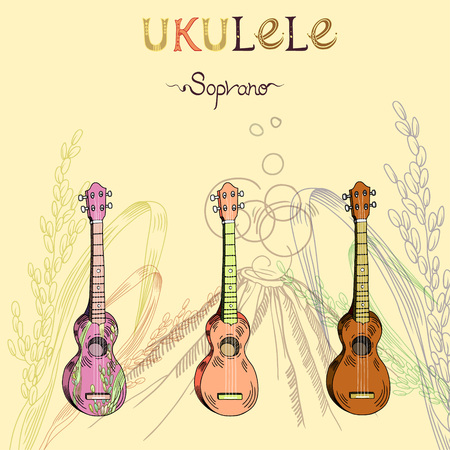 Vector illustration with traditional Hawaiian guitar ukulele soprano in three different versions: wood, color and pattern. Signed with lettering.