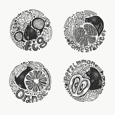 Round shape doodle fruit set with fig, persimmon, orange and pomegranate in black and white. Hand drawn vector illustration in engraved style. Illustration
