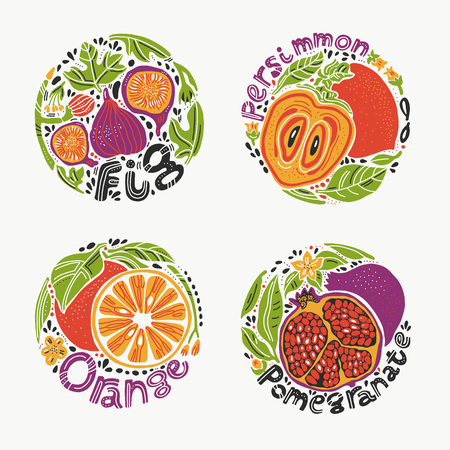 Round shape doodle fruit set with fig, persimmon, orange and pomegranate in bright colors. Illustration