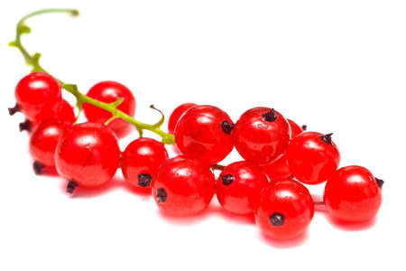 Ripe red currant isolated on white background