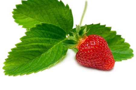 The fresh red strawberry, isolated on white with soft shadow