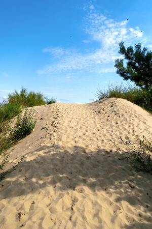 Sand dunes on the beach in the Lithuania
