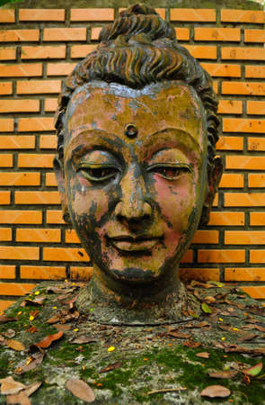 Buddha image head in the old temple in wat Umong ,Chaingmai Thailand photo
