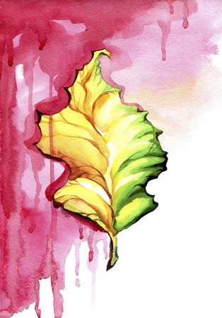 Autumn leaf on the red wet background.Watercolor painting of fallen leaf on an abstract background