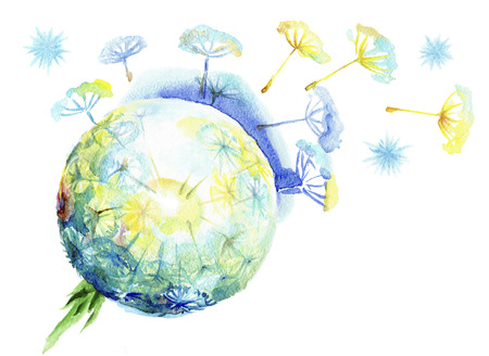 Fluffy dandelion dispersing seeds.Watercolor sphere of a dandelion on a white background Banque d'images