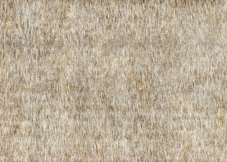 Grey faux fur background texture.Decorative fabric, wallpaper Banque d'images