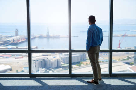Rearview full length shot of a businessman standing with his hands in his pockets, looking out of a large window in a high office, at the view of a harbour