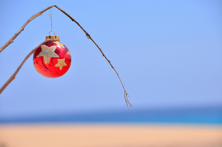 red christmas ball on the tree near the beach and ocean Stock Photo