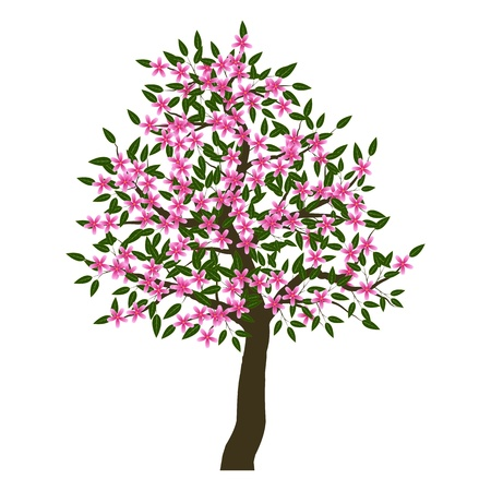 Blossoming tree Stock Vector - 13511597