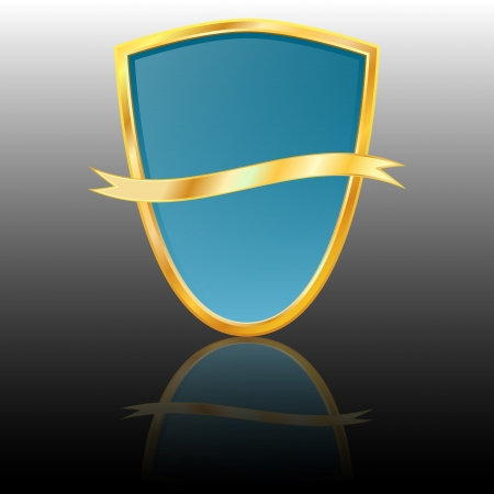 Vector shield icon Stock Vector - 15512781