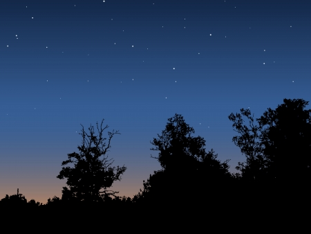 Dawn sky vector background Stock Vector - 16832752