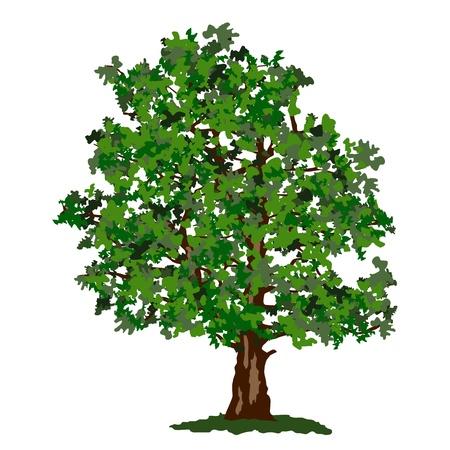 Abstract summer tree Stock Vector - 17346701