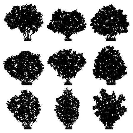 Shrubs silhouettes vector set Stock Vector - 18919969
