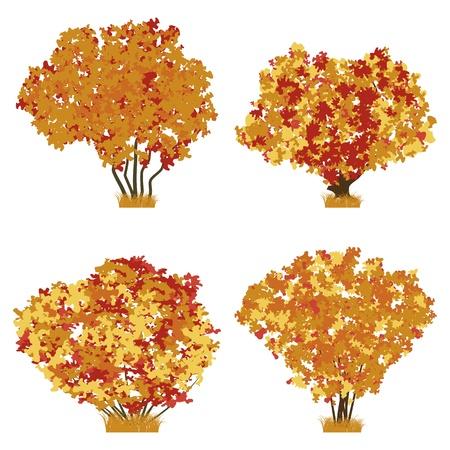 Autumn shrubs vector set Stock Vector - 18919983