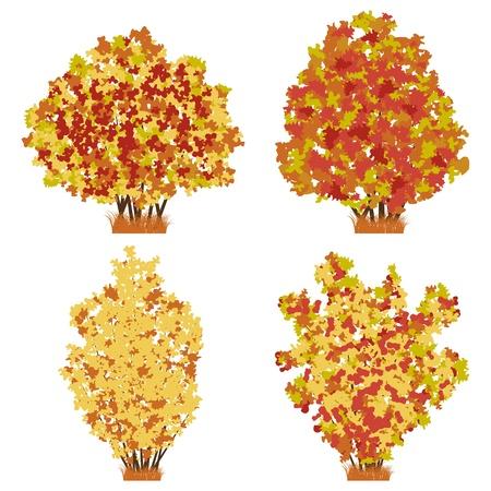 Autumn shrubs vector set Stock Vector - 18919970