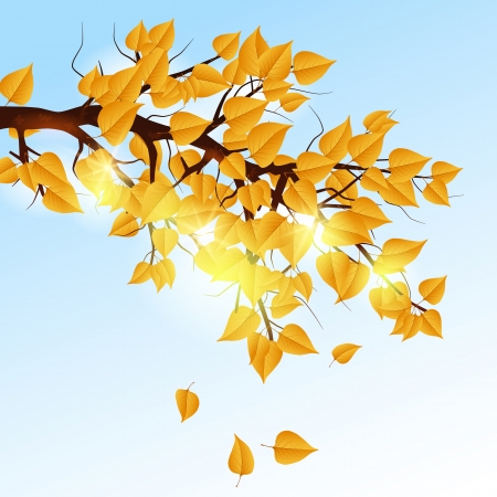 Autumn tree branch Stock Vector - 20664242