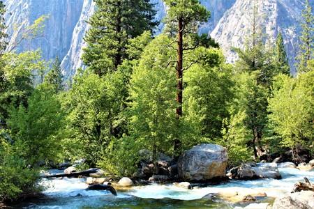 Roaring River falls Reklamní fotografie - 75625848