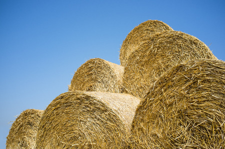 stapled: bale of straw in summer Stock Photo
