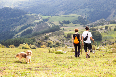hiking boot: man and woman and dog on a summer walk in the mountains