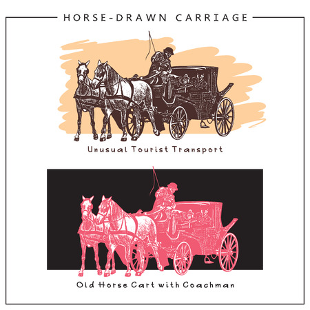 horse cart: Illustration of Horse-drawn Carriage, Horse Cart with man and Two Horses. Colored image. Illustration