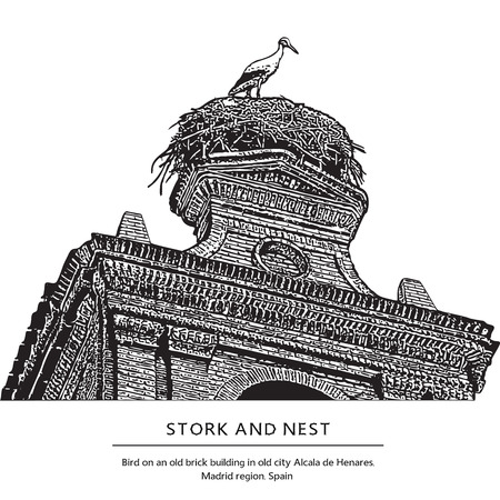 Stork and nest on an old brick building. One bird on the roof. Vector illustration. Alcala de Henares, Madrid region, Spain. Illustration