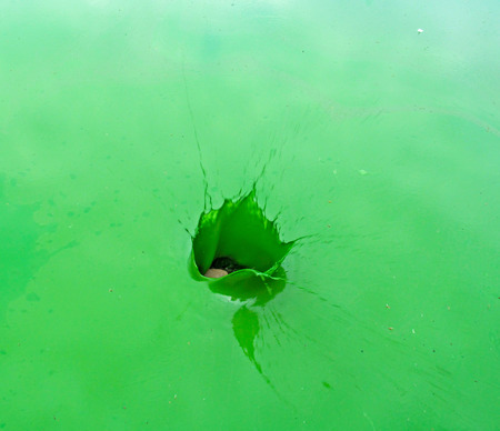 Splash of green, green and blue water Natural background. Ecology concept of polluted nature by harmful algal blooms.