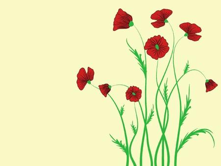 poppy flower pattern abstraction illustration Stock Illustration - 6952896