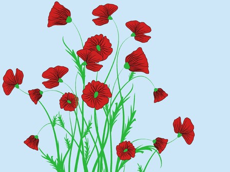 poppy flower pattern abstraction illustration illustration