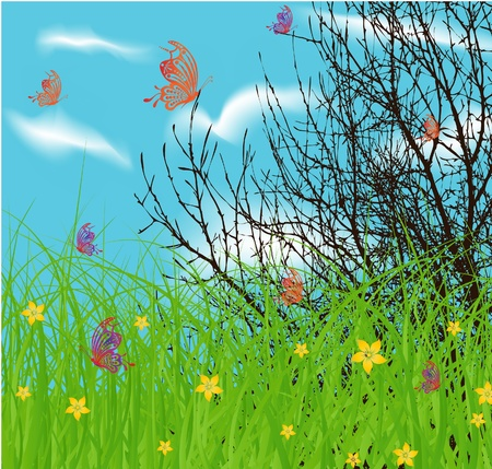 softly: vector tree at spring green field and blue cloud sky