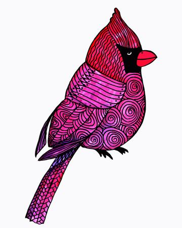 finch: Hand Drawn Bird Doodles Watercolor Sketch