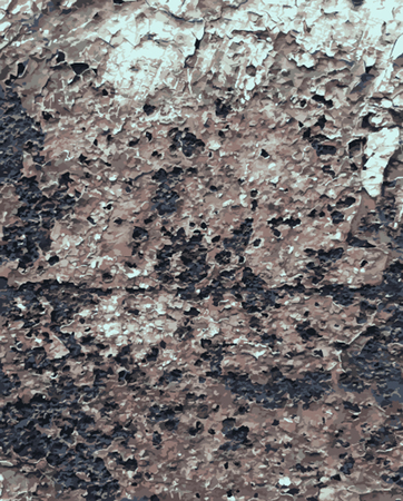 mildew: Abstract Rust Paint Crack Texture for your design. Illustration