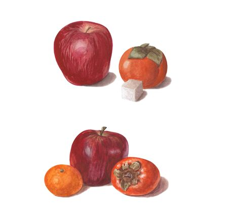 Set of bright watercolor fruits. Red apples with persimmon, sugar and mandarin isolated on white background for design and decoration. 版權商用圖片